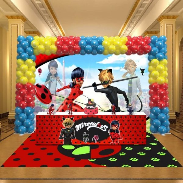Festa miraculous ladybug e cat noir