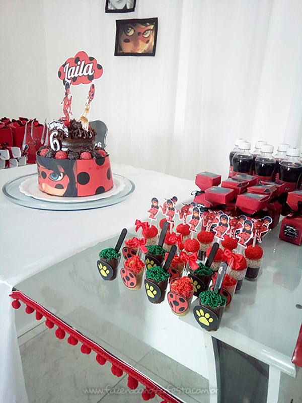Festa ladybug simples e barata