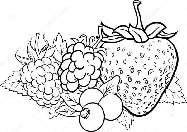 Riscos para pintura em pano de prato frutas
