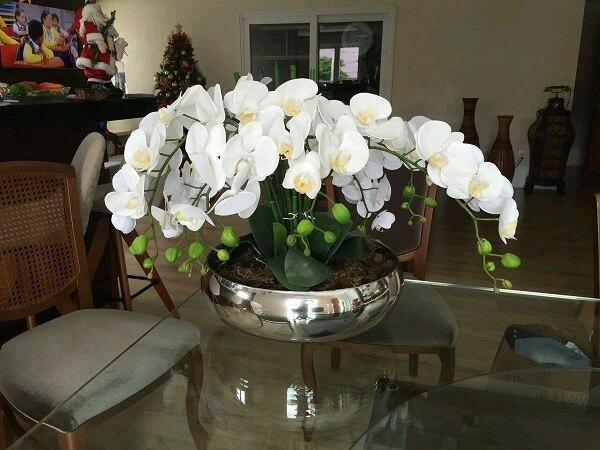 As orquídeas são plantas que purificam o ambiente