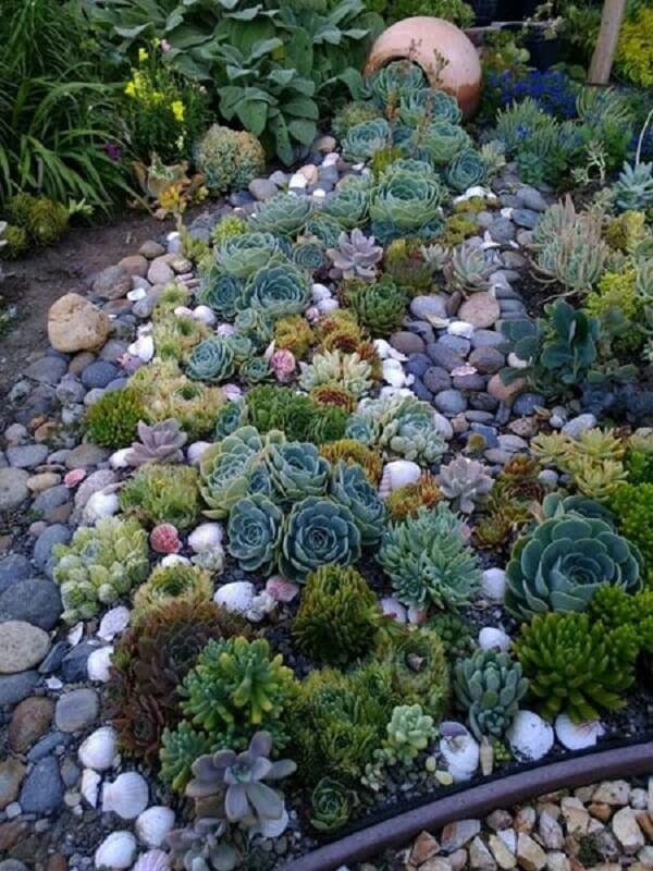 O vaso de barro faz parte da composição do jardim de suculentas