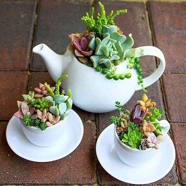 Conjunto de bule e xícaras formam um lindo jardim de suculentas