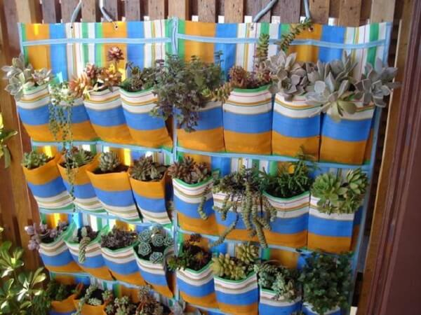 Jardim de suculentas estruturado em uma sapateira de plástico