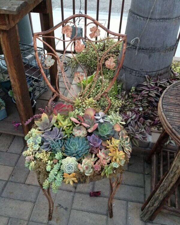 Jardim de suculentas montado sobre a estrutura metálica de uma cadeira