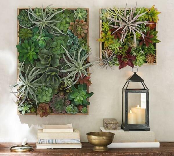 Jardim vertical de suculentas traz frescor ao ambiente