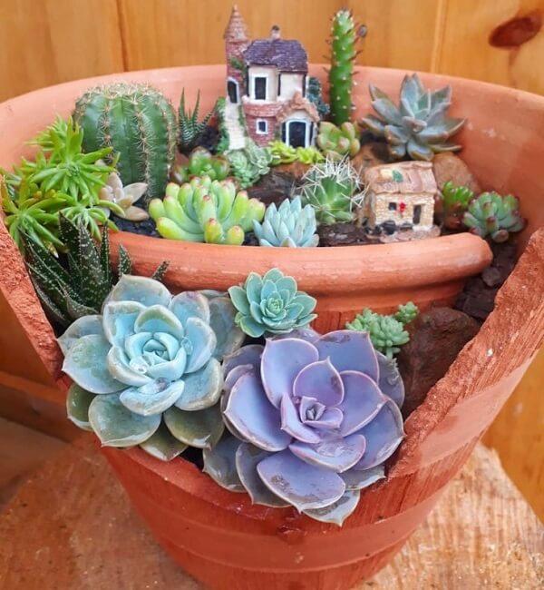 Reaproveite a estrutura de vaso quebrado e monte um mini Jardim de suculentas