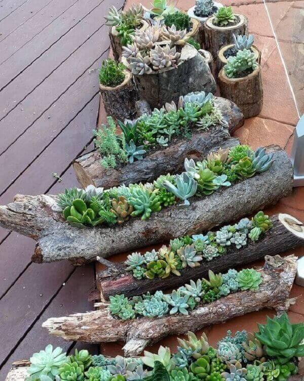 Utilize troncos de madeira como base para seu jardim de suculentas