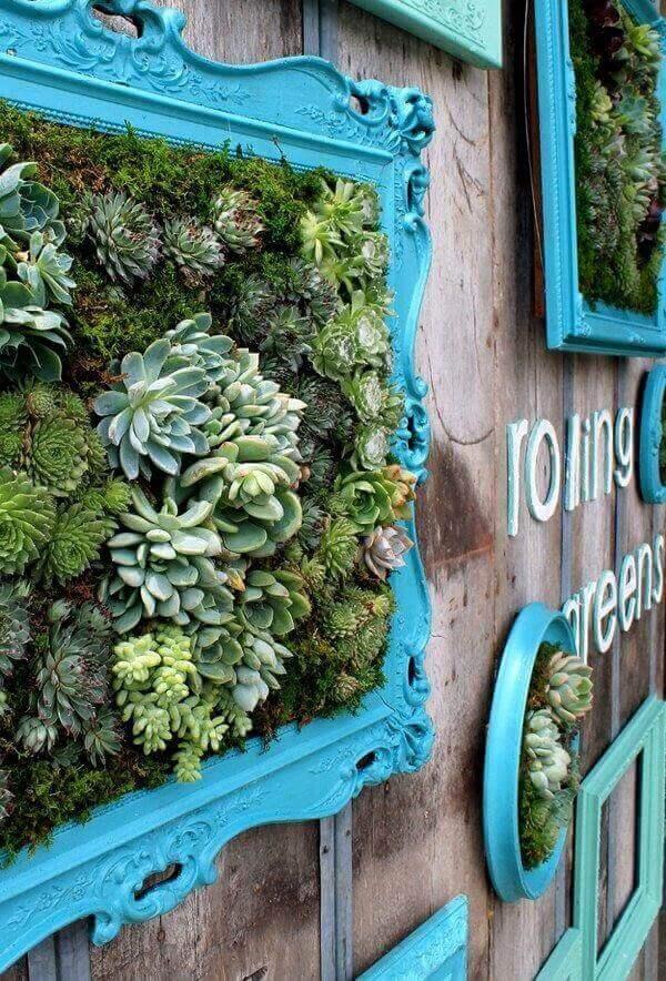 O jardim de suculentas foi fixado em uma moldura com tom azul tiffany