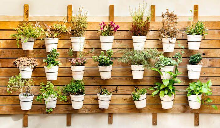 Suporte para plantas no jardim