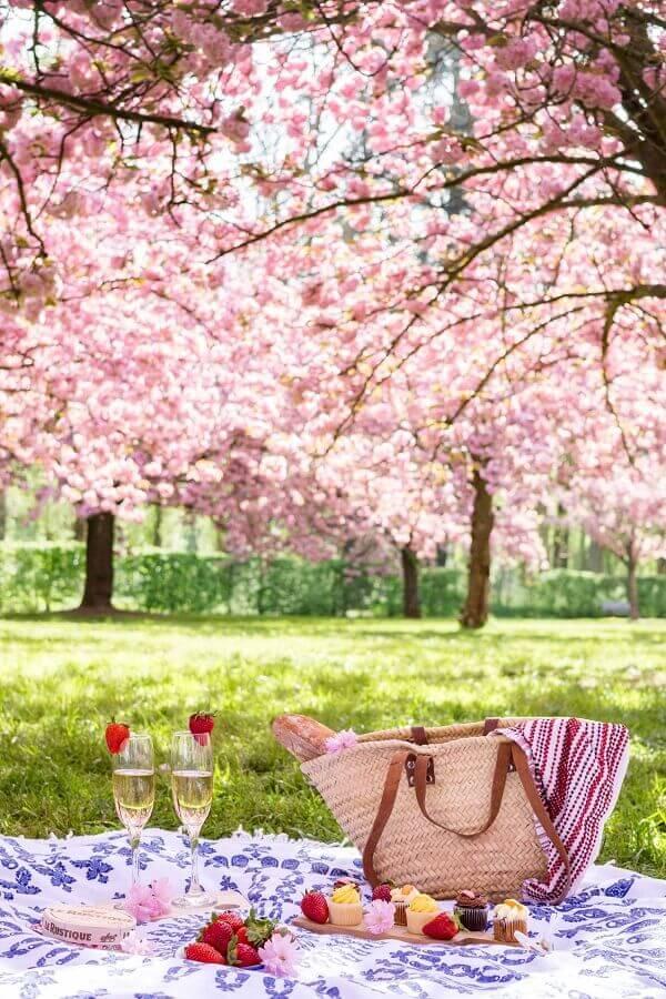 frutas e doces para piquenique romântico Foto Pinosy