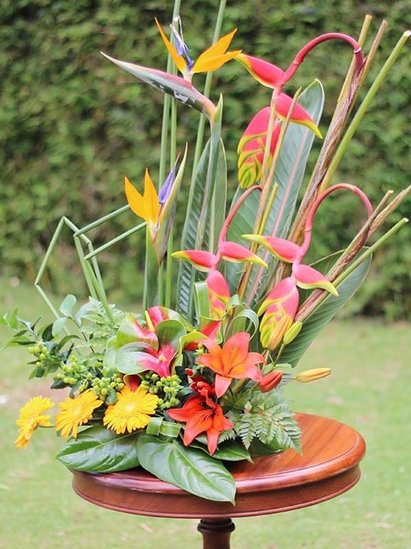 Helicônia arranjos com flores rosa gérberas