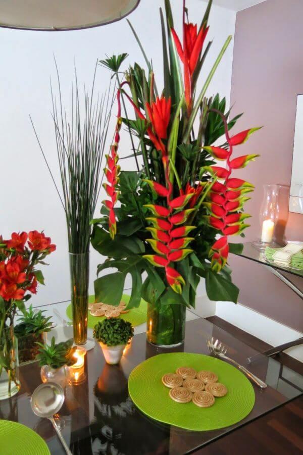 Espécie de planta rostrata