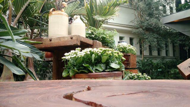 jardim residencial - jardim com mesa de madeira e objetos decorativos