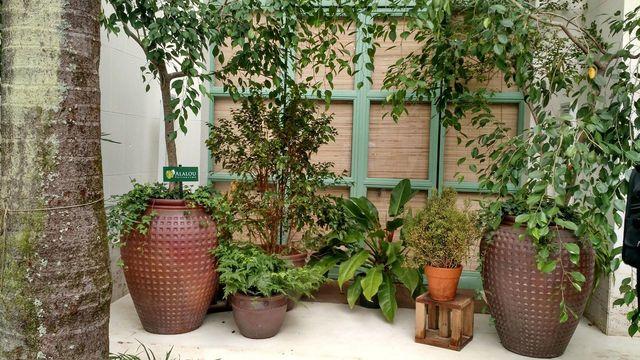 jardim residencial - vasos decorativos