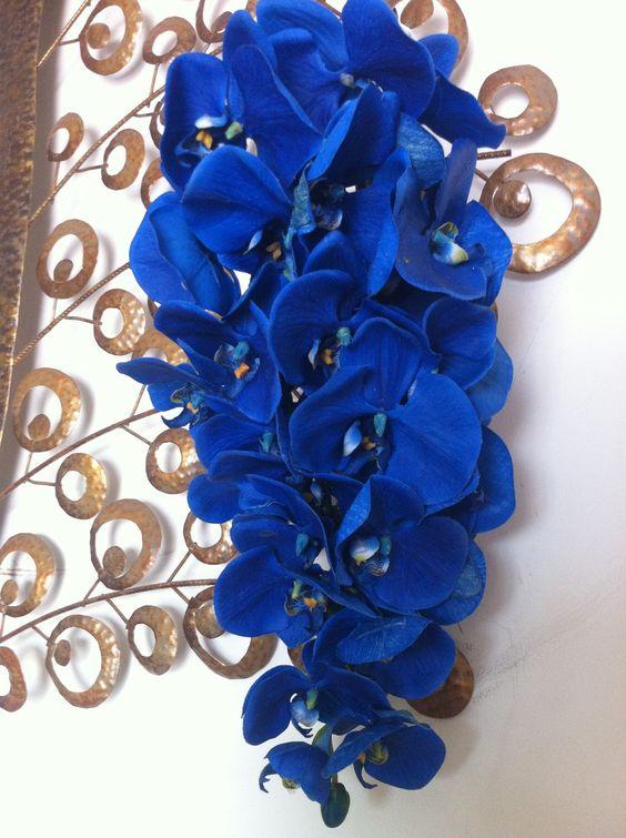 orquídea azul - buquê de orquídea azul