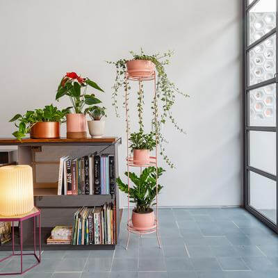 Suporte de ferro para plantas na decoração da sala de estar