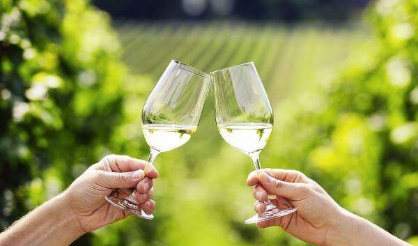 Taça de vinho gigante para brindar