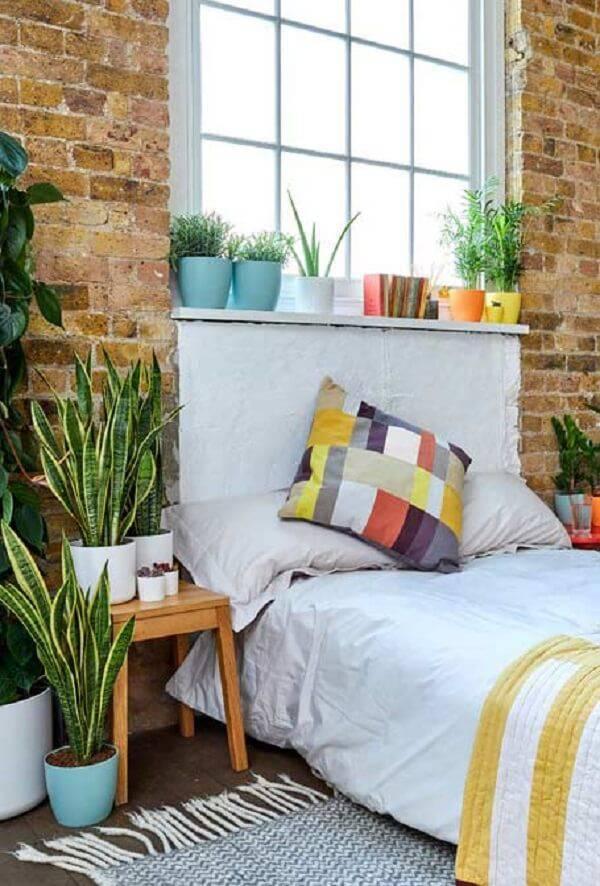 Aproveite a luz natural da janela para cultivar plantas para quarto