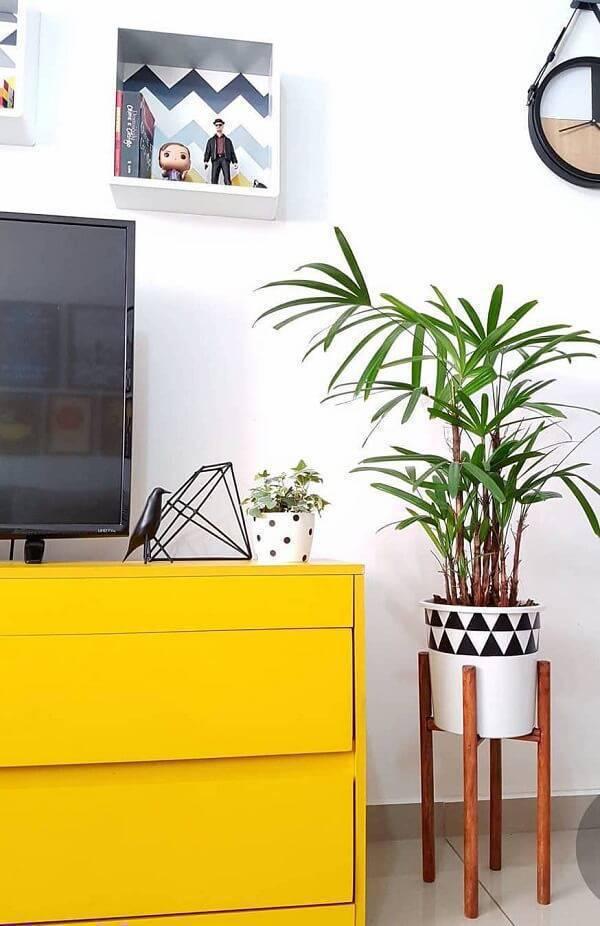 A palmeira ráfia é uma das espécies de plantas para quarto que embelezam o ambiente