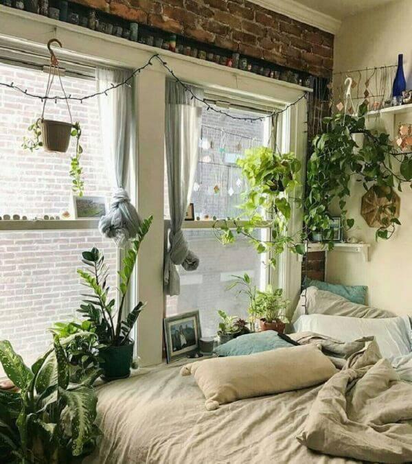 Plantas para quarto fixadas próximo a janela
