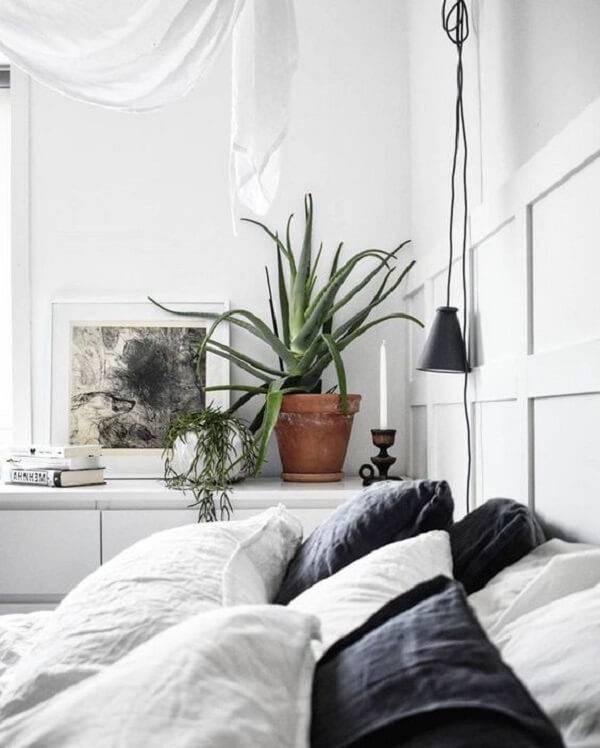A babosa é uma das plantas para quarto que podem ser cultivadas ao lado da cama