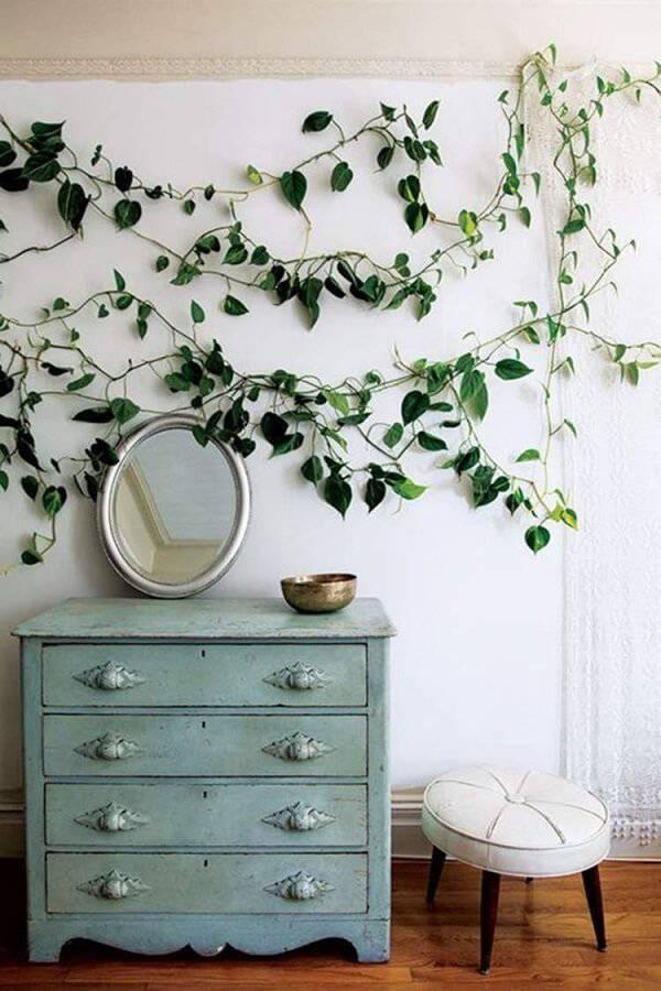 A Hera é uma das plantas para quarto que podem ser fixadas na parede do dormitório