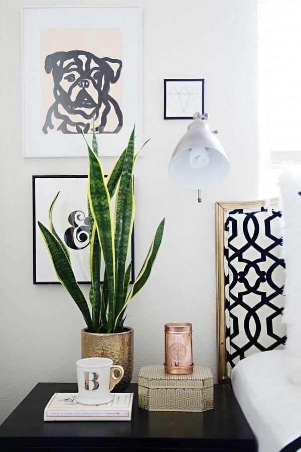A espada de são jorge é uma das plantas para quarto que purificam o ar
