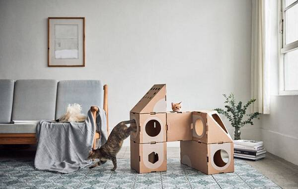 Móveis de papelão para gatos