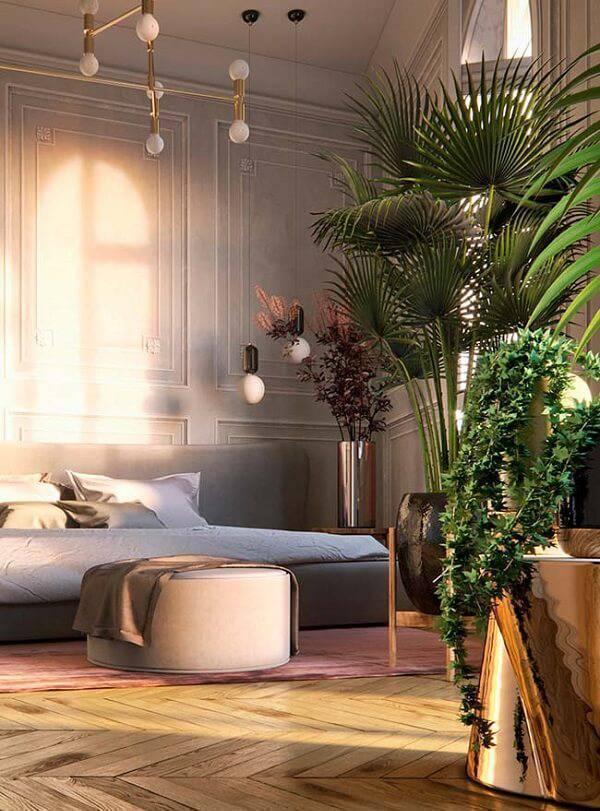 Plantas para quarto trazem beleza e melhoram a qualidade do ar