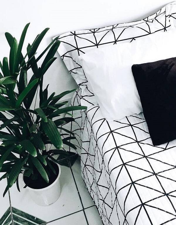A palmeira ráfia é uma das plantas para quarto que melhoram a qualidade do ar