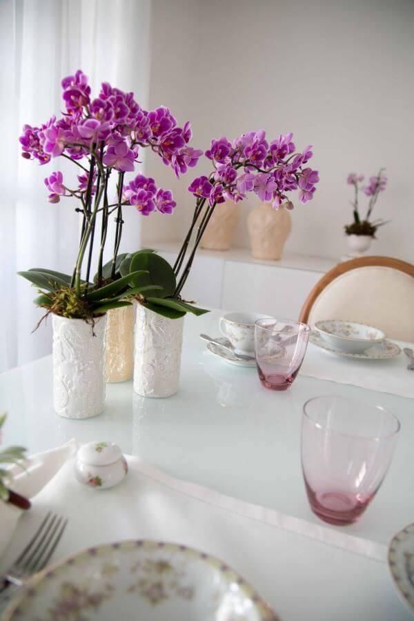 Mini orquídea lilás linda na mesa de jantar