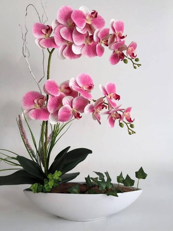 Como cuidar da mini orquídea