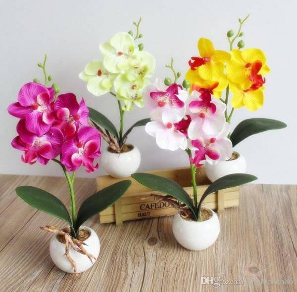Vaso pequeno para mini orquídea