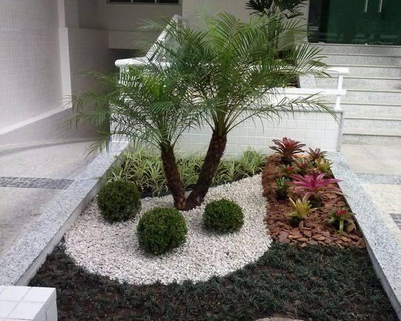 palmeira fênix - paisagismo com palmeira fênix