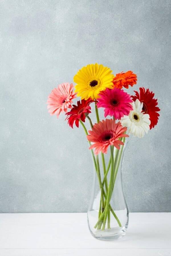 Decoração minimalista formada com flores de gérbera coloridas