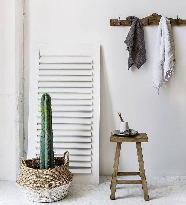Cachepô criativo para diferentes tipos de cactos decora o ambiente da casa