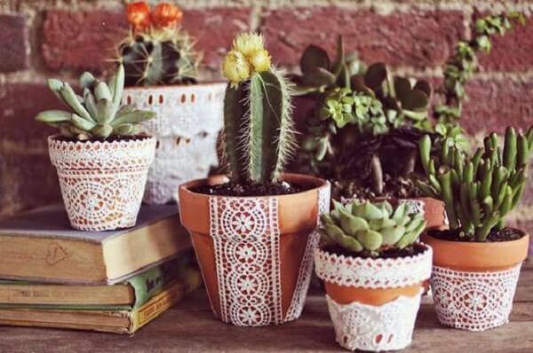 Decore a casa com diferentes tipos de cactos