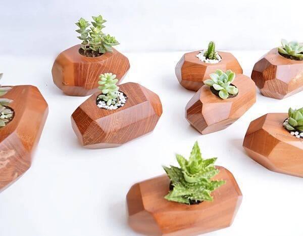 Pequenos pedaços de madeira podem servir como vasos para diferentes tipos de cactos