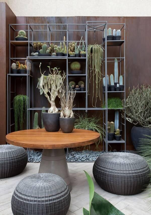 Jardim com mesa de madeira e diferentes tipos de cactos