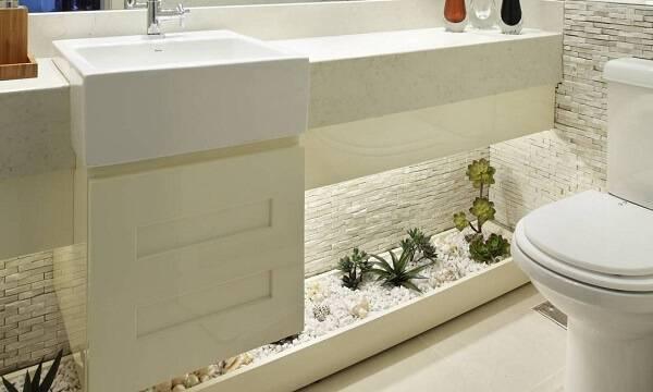 Aproveite o espaço embaixo da pia e cultive diferentes tipos de cactos e suculentas