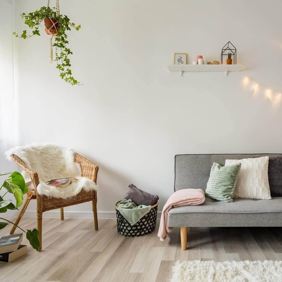 minimalist decor living room with couch, grey and potted plants