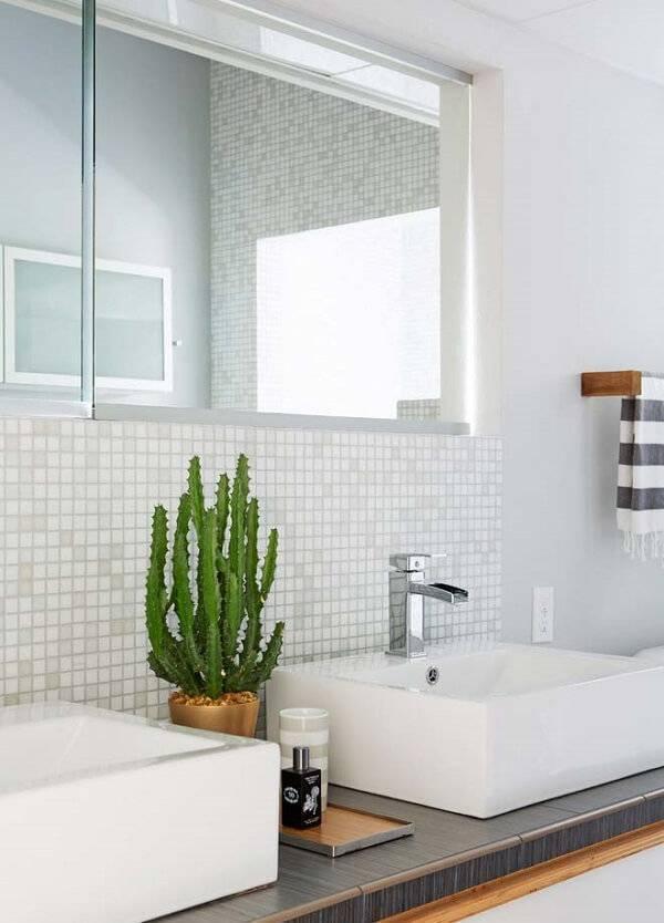 Decore o espaço da banheiro com diferentes tipos de cactos