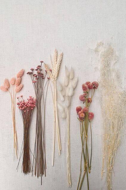 flores secas - mesa com flores secas coloridas