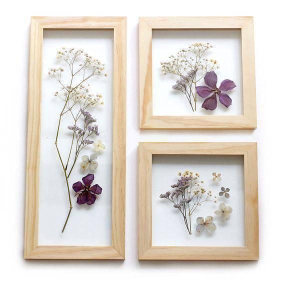 flores secas - quadros de flores secas