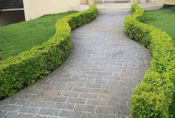Forme lindos caminhos com a miracema cinza