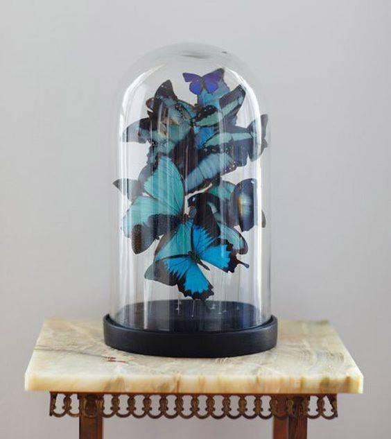 redoma - redoma com borboletas de papel