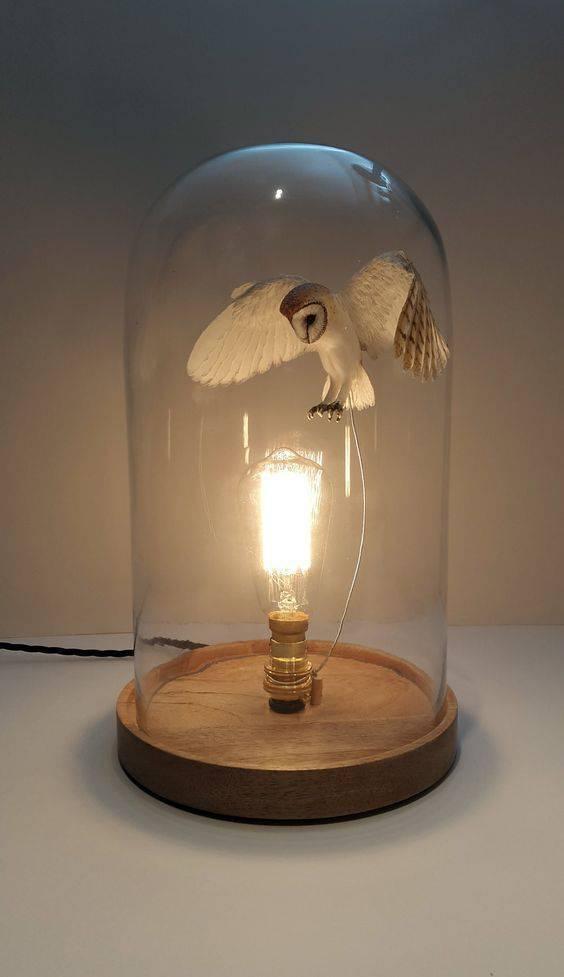 redoma - redoma com coruja e lâmpada