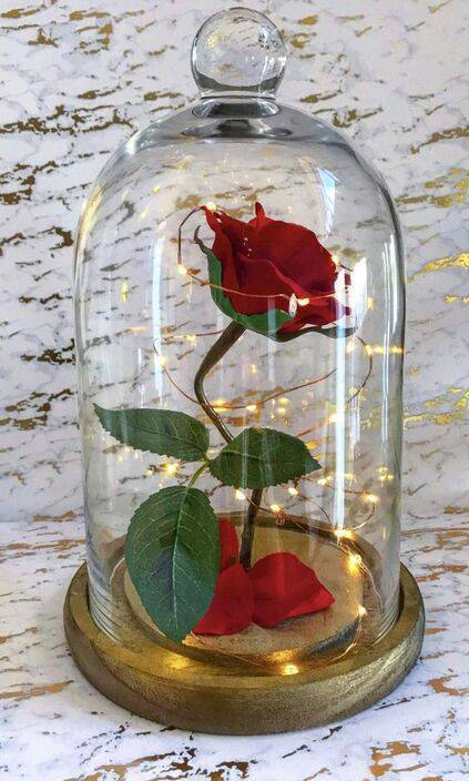 redoma - redoma com rosa