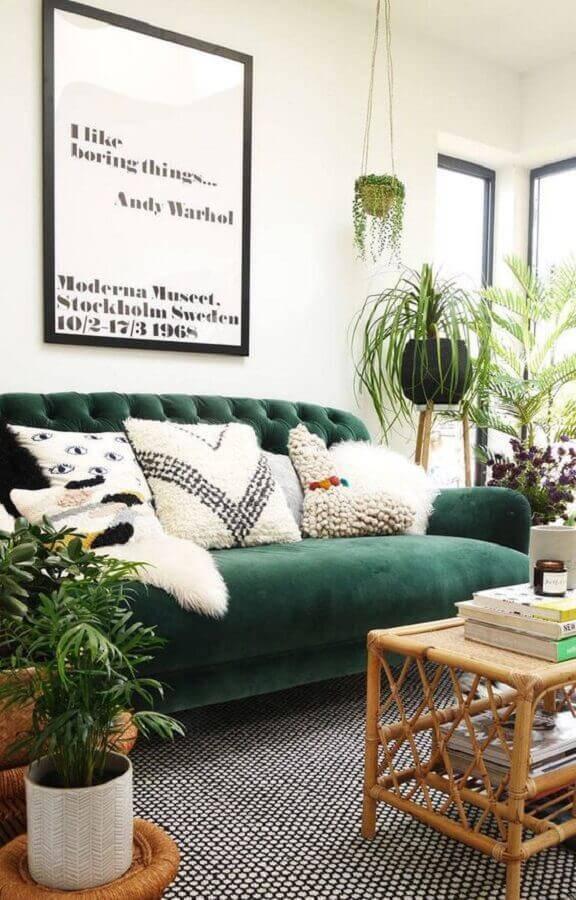 sofá verde para decoração de sala com vários vasos de plantas Foto Only Girl in the House