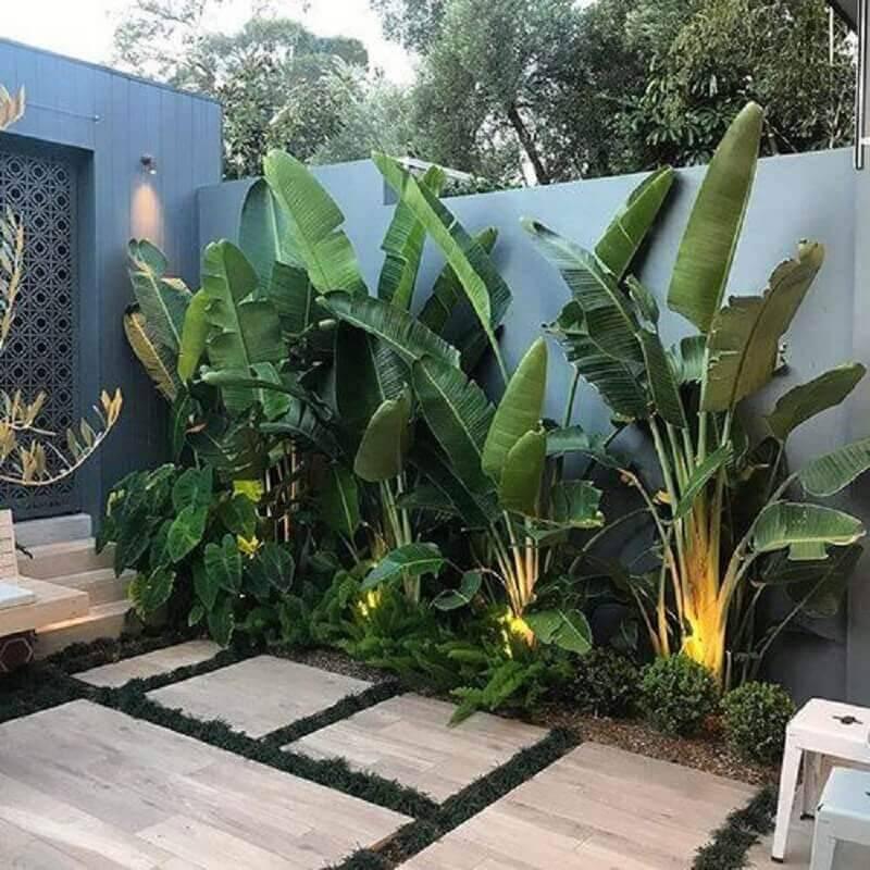 tipos de plantas grandes para jardim residencial Foto Adam Robinson Design